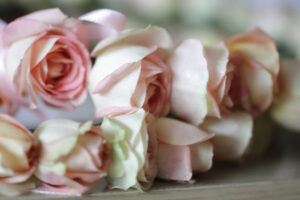 Wedding Flowers Waterford Tramore Bridal Deirdre & Liam1